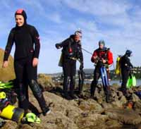 island bay dive training scuba diving course wellington