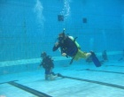 dive training and courses in wellington with island bay divers